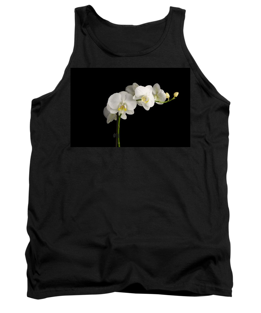Orchid Tank Top featuring the photograph Orchid On Black by Nick Field