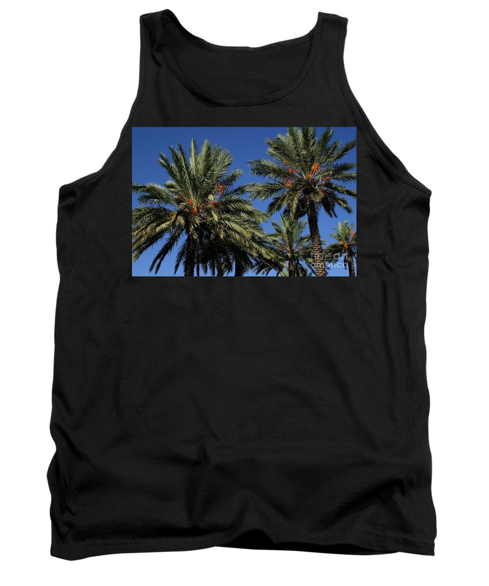 Gary Gingrich Tank Top featuring the photograph Palms 9838b by Gary Gingrich Galleries