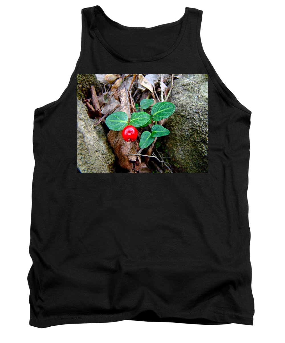 Partridge Berry Tank Top featuring the photograph Partridge Berry Berry - Mitchella Repens by Mother Nature