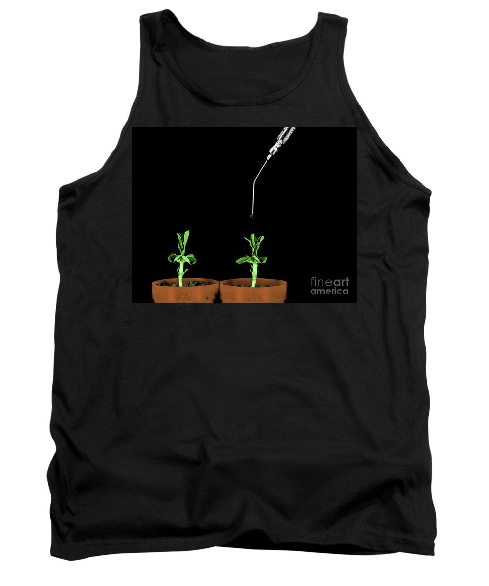 Science Tank Top featuring the photograph Pea Plants Grown With Gibberellic Acid by Omikron