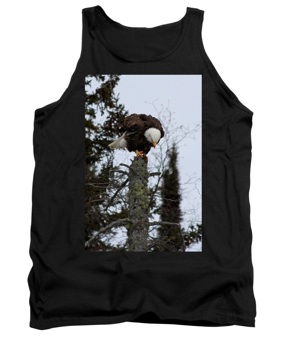 Tank Top featuring the photograph Perch by Joi Electa