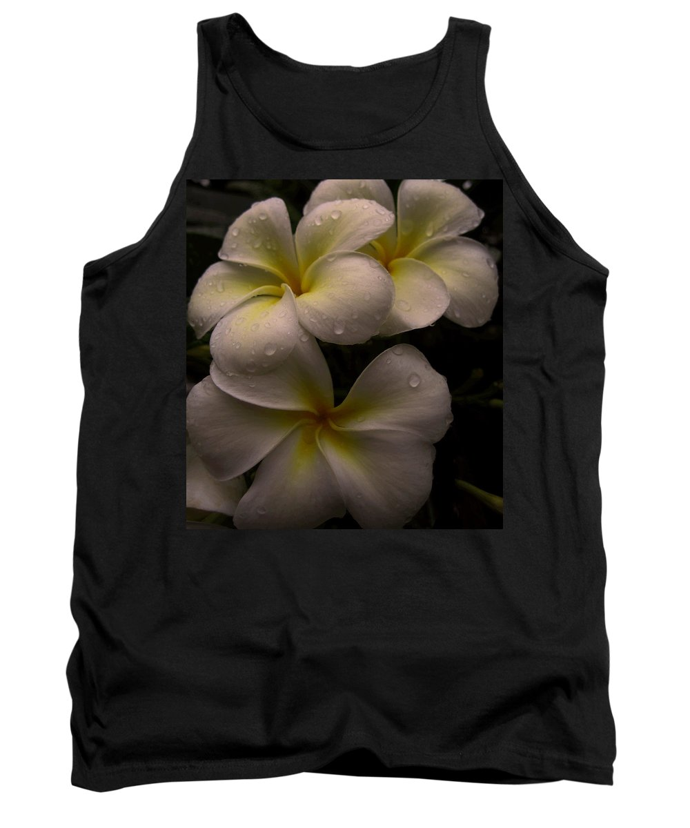 Plumeria Tank Top featuring the photograph Plumeria by Dorothy Cunningham