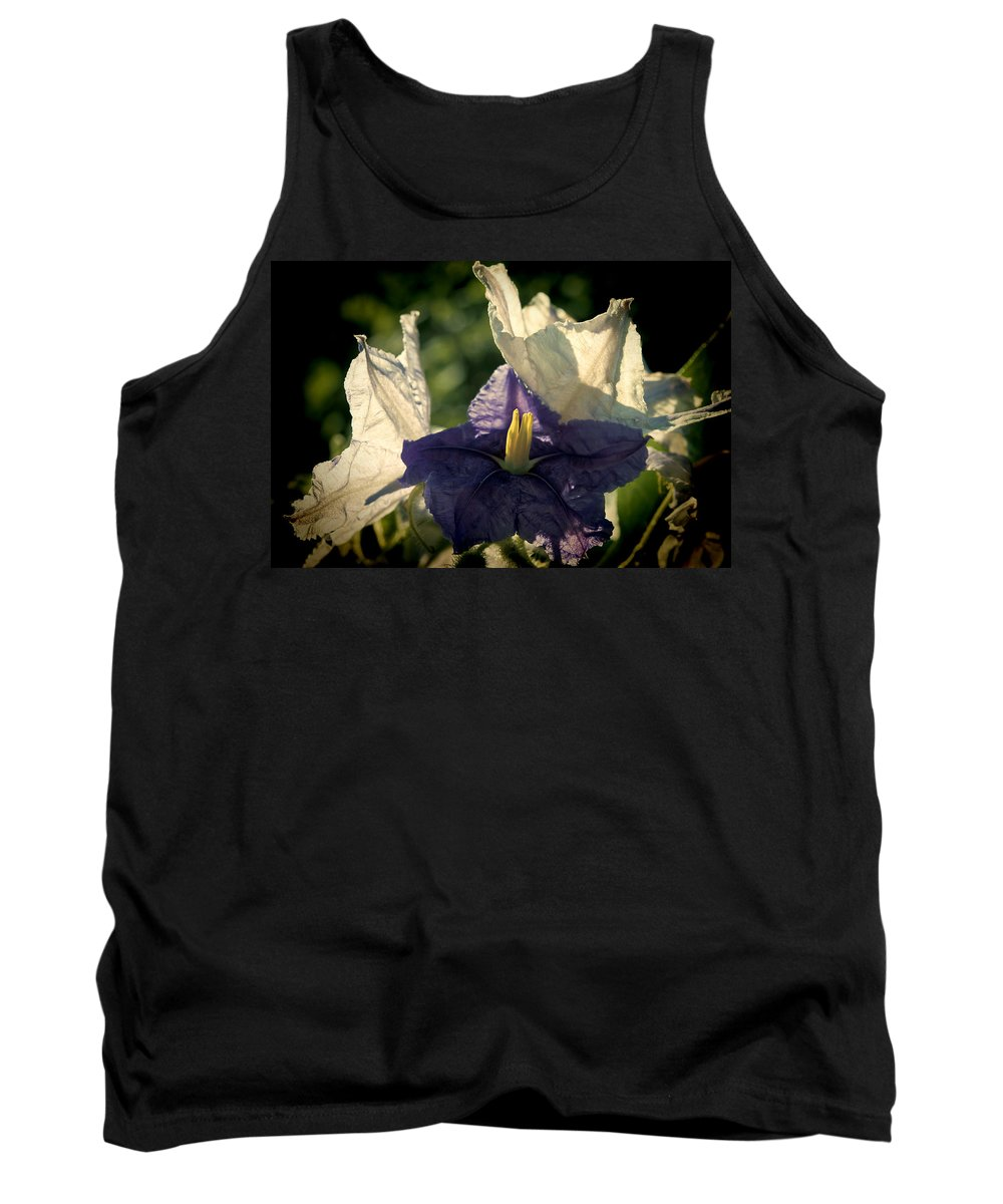 Flower Tank Top featuring the photograph Radiance by Steven Sparks