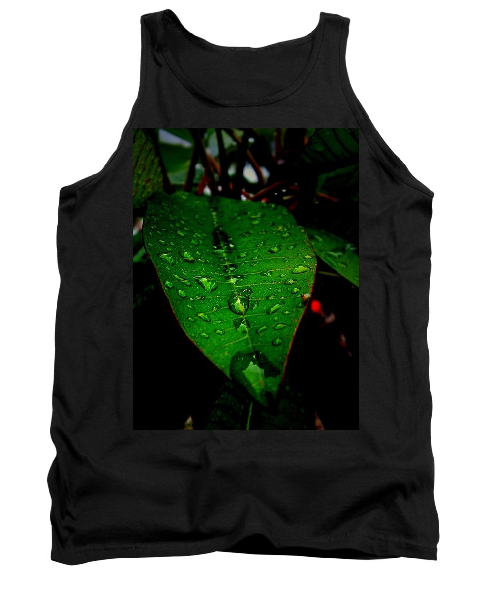 Leaf Tank Top featuring the photograph Refreshed by David Weeks