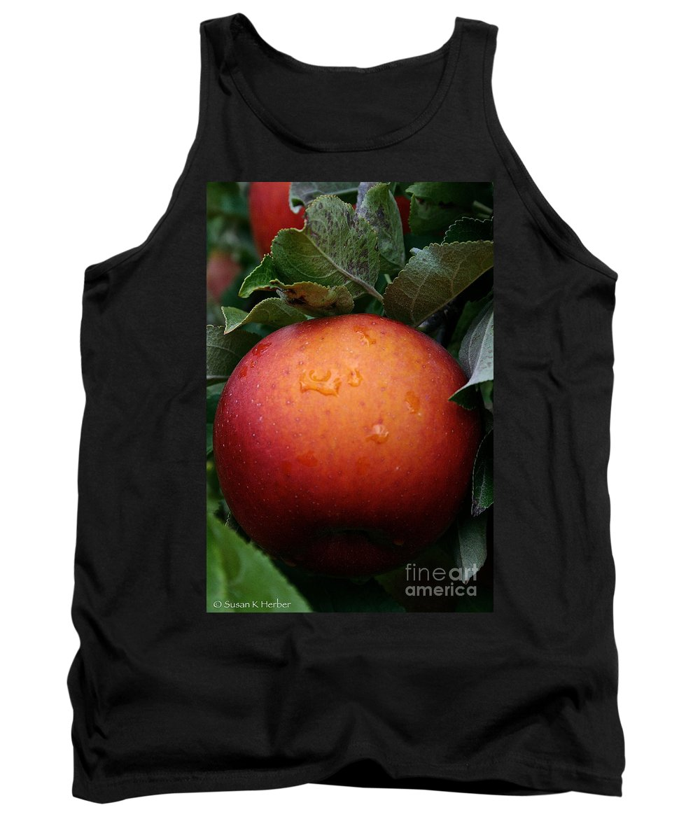 Landscape Tank Top featuring the photograph Satisfaction Guaranteed by Susan Herber