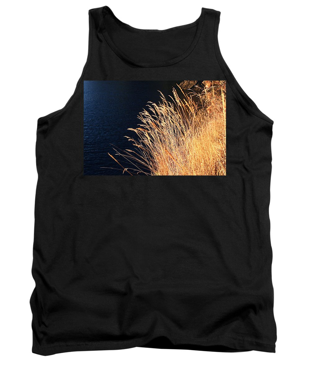 Seagrass Tank Top featuring the photograph Seagrass In Gold by Lorraine Devon Wilke