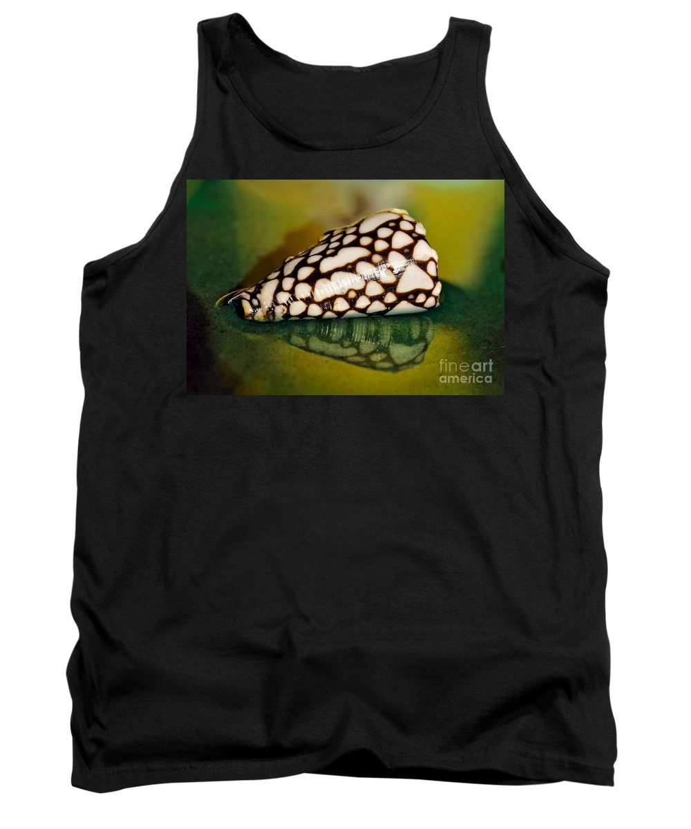 Photography Tank Top featuring the photograph Seashell Wall Art 4 - Conus Marmoreus by Kaye Menner