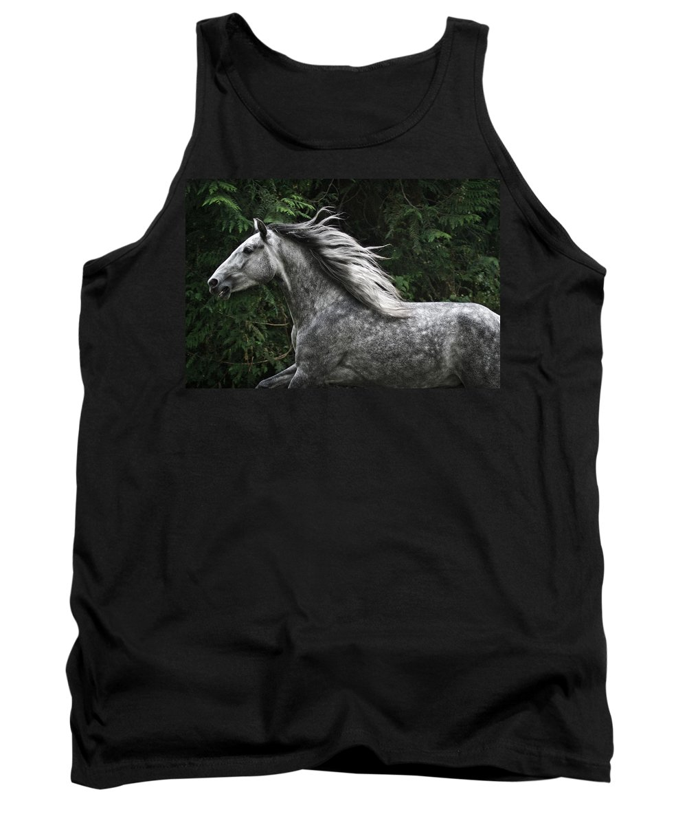 Silver Dapple Tank Top featuring the photograph Silver Dapple by Wes and Dotty Weber