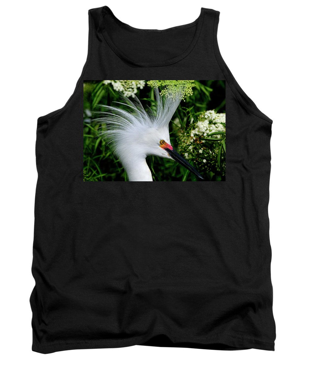 Snowy Tank Top featuring the photograph Snowy Egret With Breeding Plumage by Bill Dodsworth