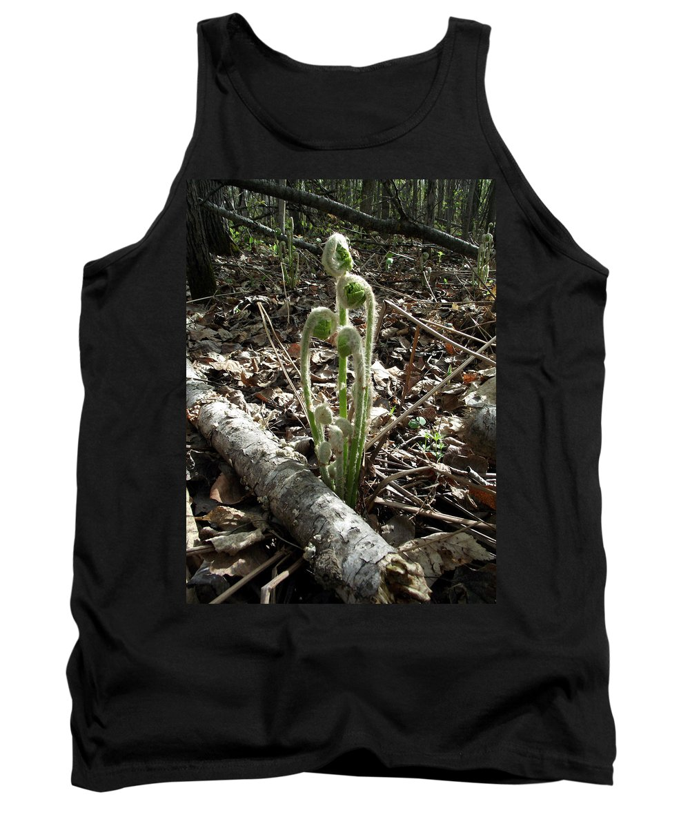 Minnesota Tank Top featuring the photograph Spring Forest Fern by Brenda Hagenson