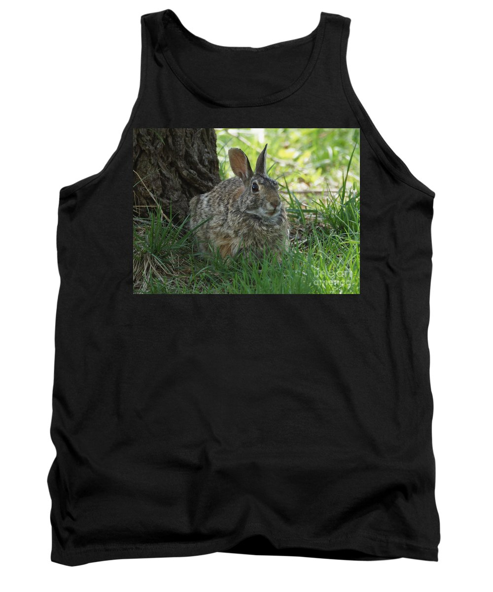 Rabbit Tank Top featuring the photograph Spring Time Rabbit by Lori Tordsen