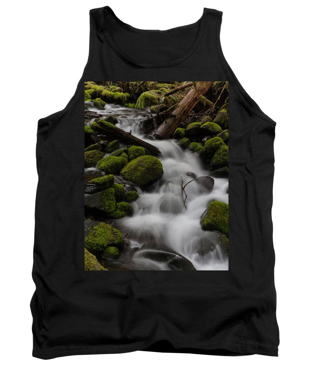 Olympic National Park Tank Top featuring the photograph Stepping Stones by Mike Reid