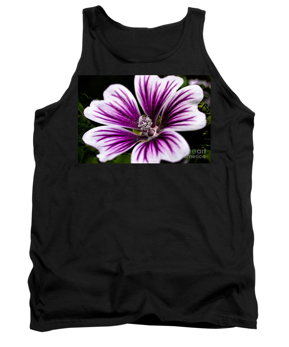 Flower Tank Top featuring the photograph Stripped Blossom by Larry Carr