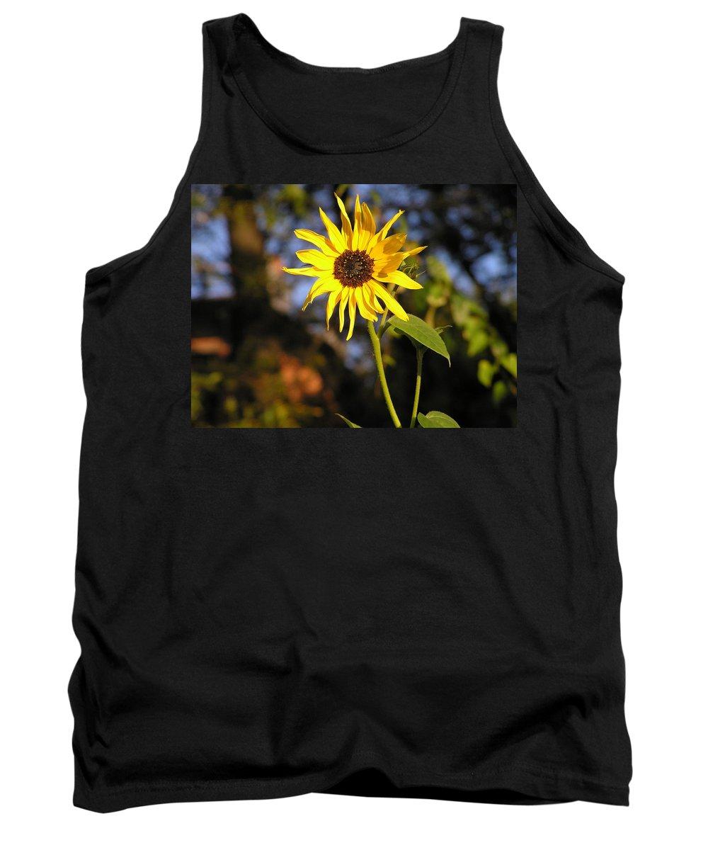 Sunflower Tank Top featuring the photograph Sunflower by Stefa Charczenko
