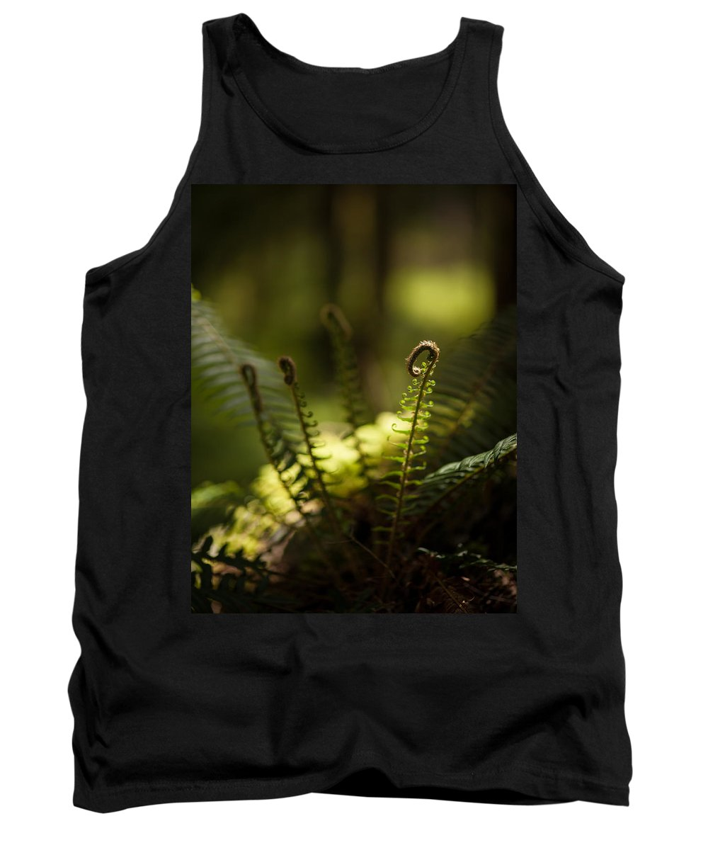 Olympic National Park Tank Top featuring the photograph Sunlit Fiddleheads by Mike Reid