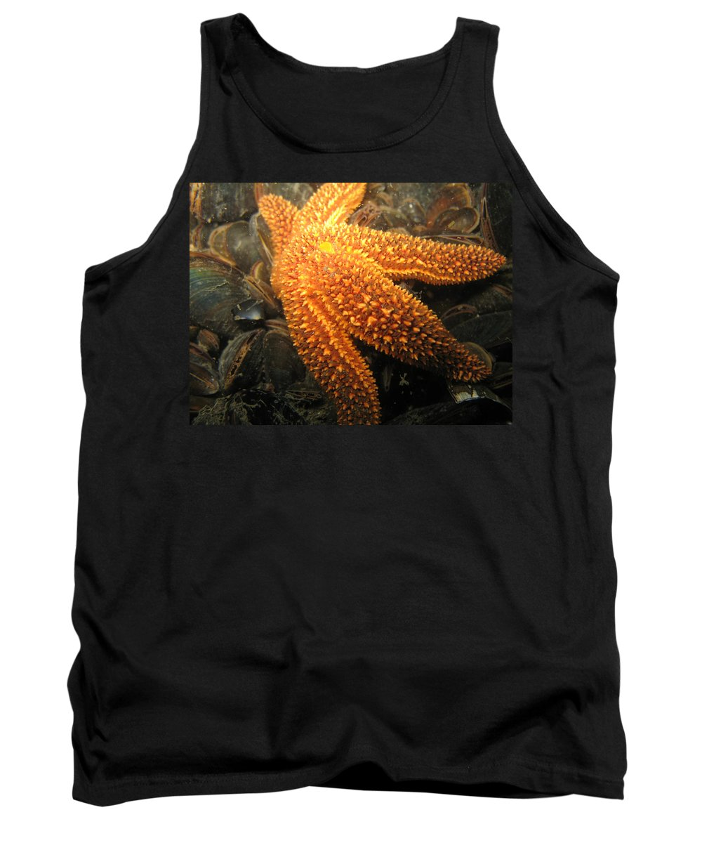 Star Tank Top featuring the photograph The Great Starfish by Paul Ward