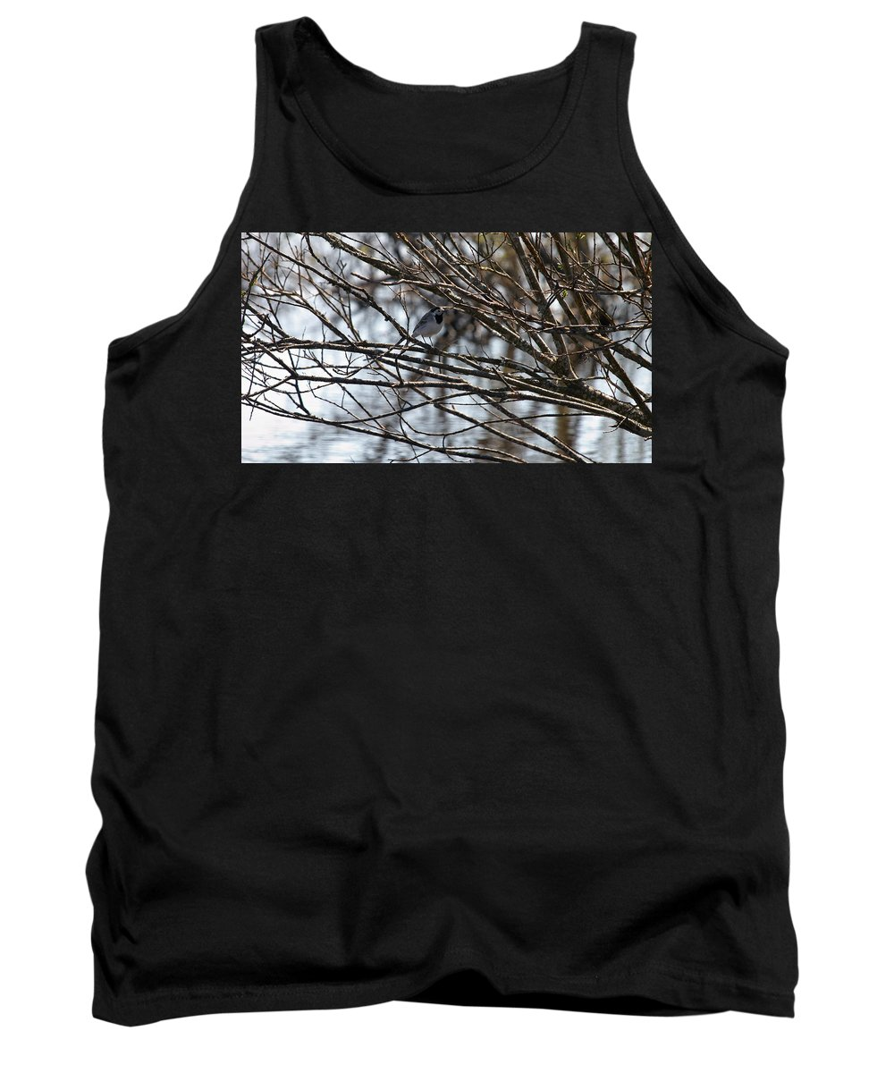 Isosuo Tank Top featuring the photograph White Wagtail by Jouko Lehto