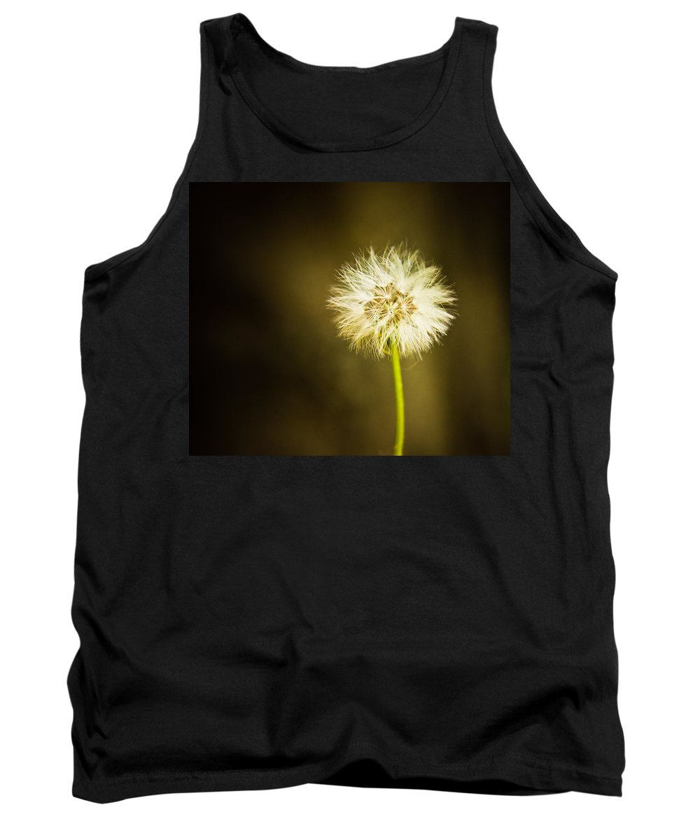 Dandelion Tank Top featuring the photograph Wishes by Sara Frank
