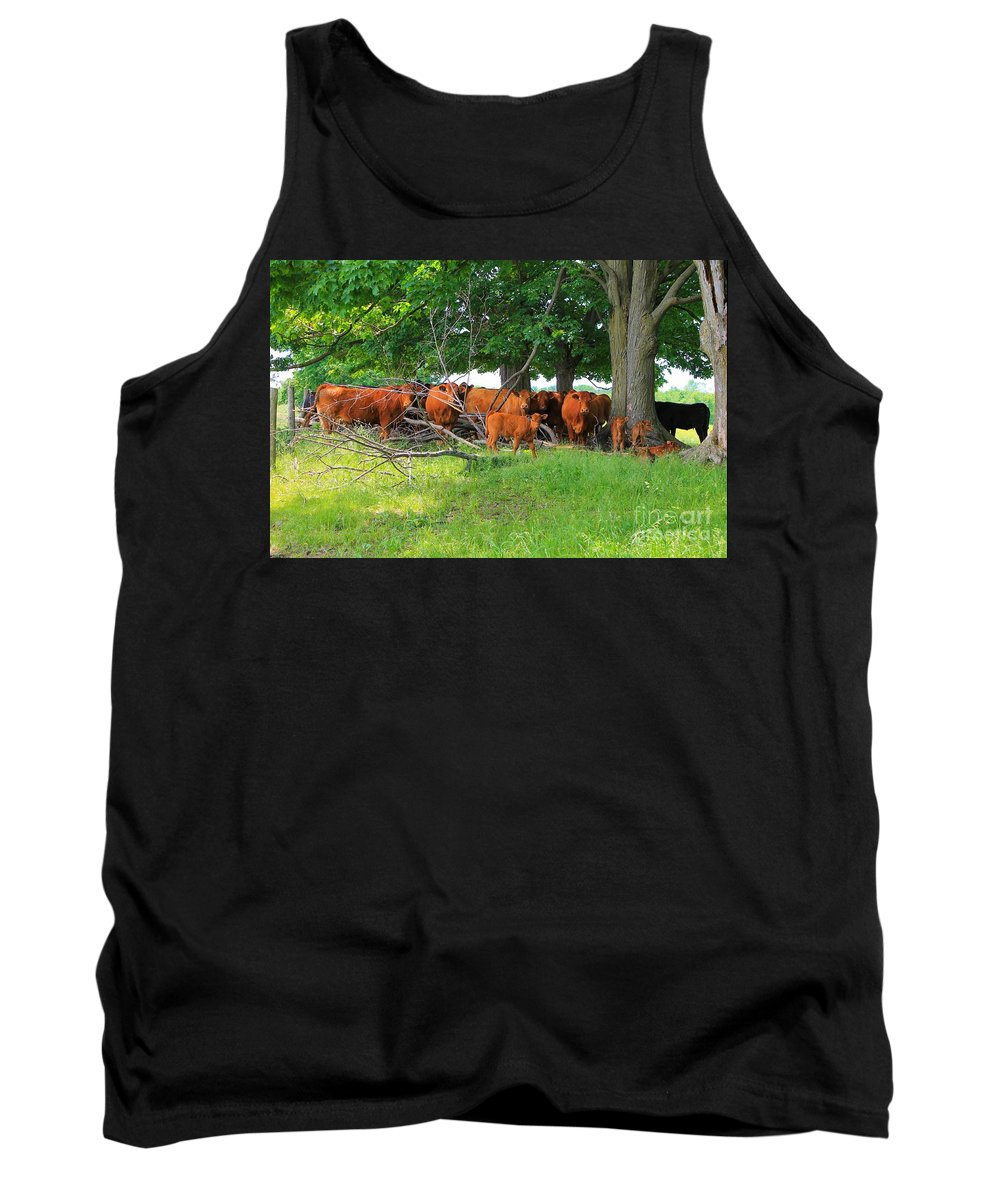 Photograph Tank Top featuring the photograph Cattle Herd by Anthony Djordjevic