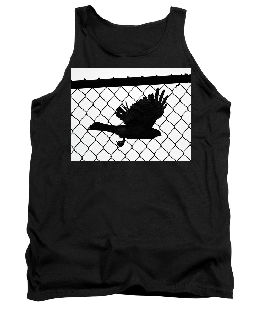 Fence Tank Top featuring the photograph Coopers Hawk by Steve Gass