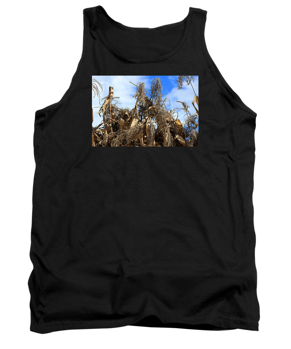 Corn Tank Top featuring the photograph Corn Stalks Drying In The Sun by Robert Hamm