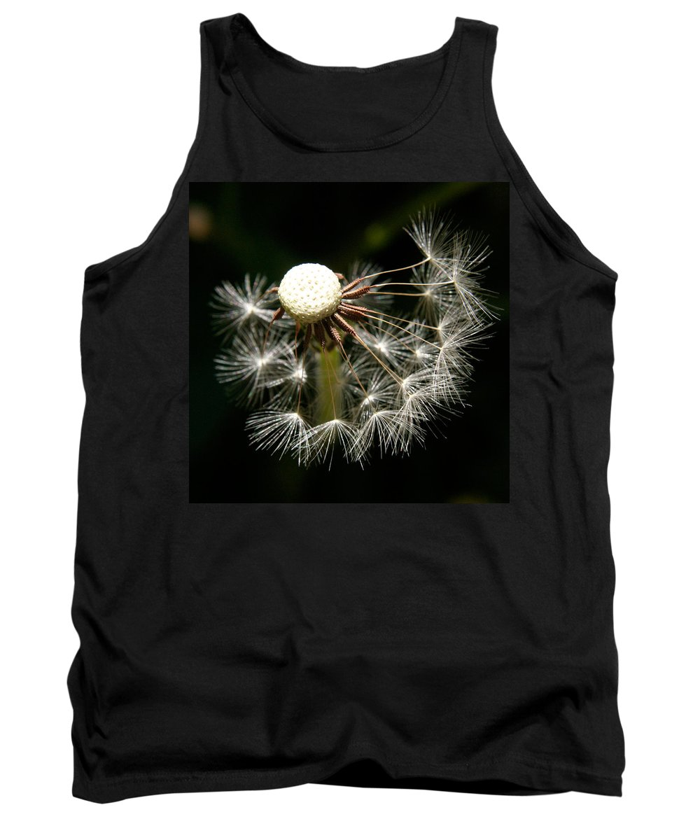 Dandelion Tank Top featuring the photograph Dandelion by Ralph A Ledergerber-Photography