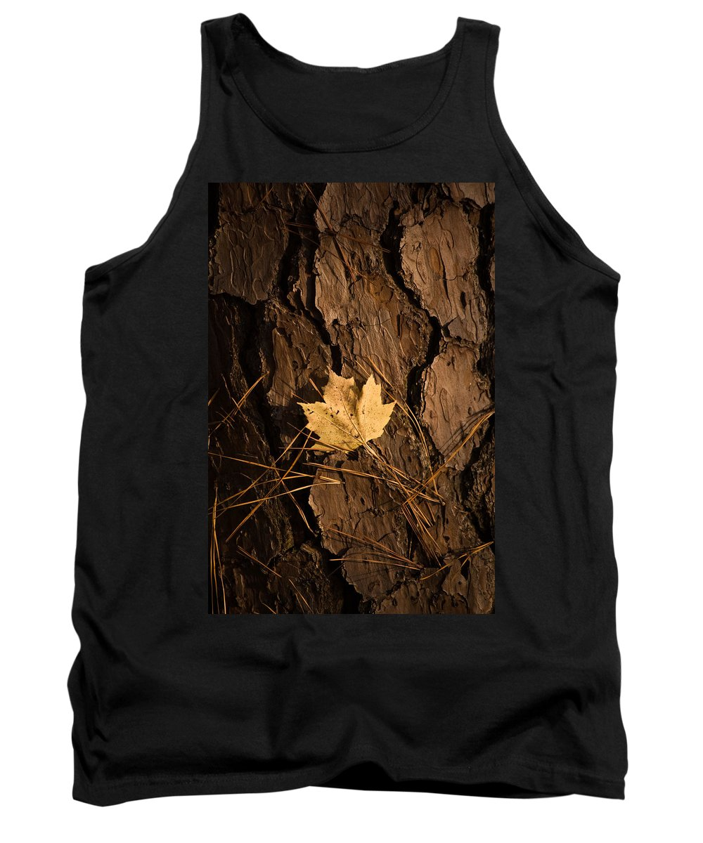 Leaf Tank Top featuring the photograph Fallen Leaf by Gary Adkins