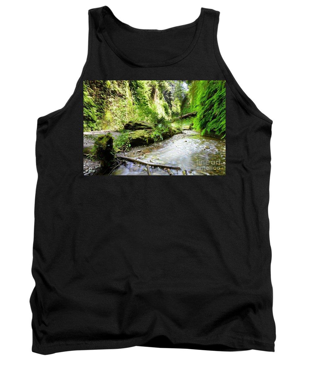 Tank Top featuring the photograph Fern Canyon, Redwood National Park by Vu Nguyen