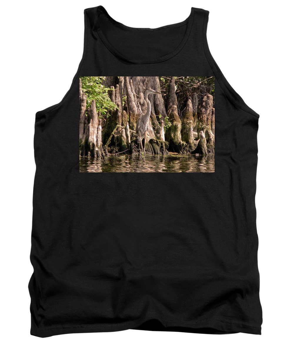 Great Blue Heron Tank Top featuring the photograph Heron And Cypress Knees by Steven Sparks