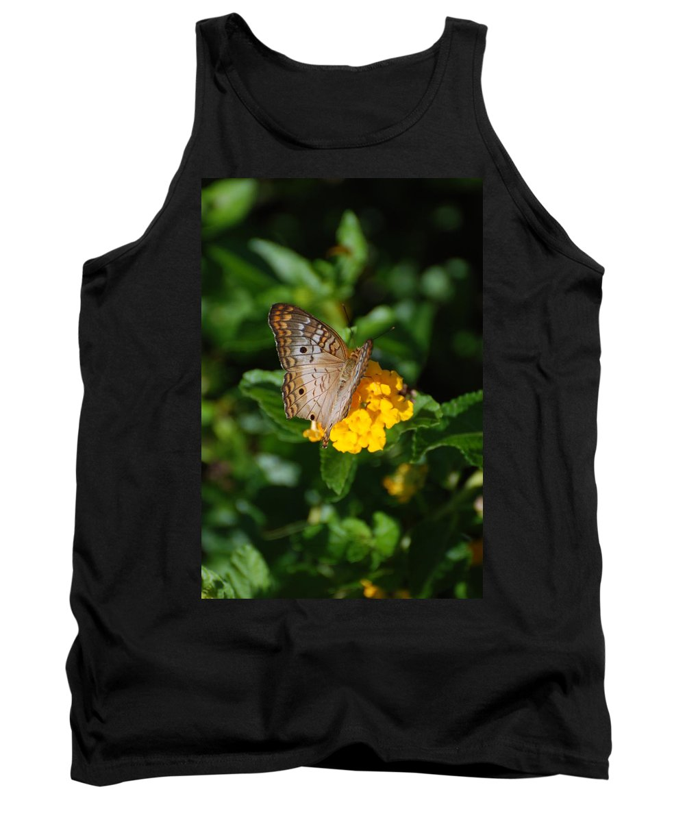 Butterfly Tank Top featuring the photograph Landed by Rob Hans