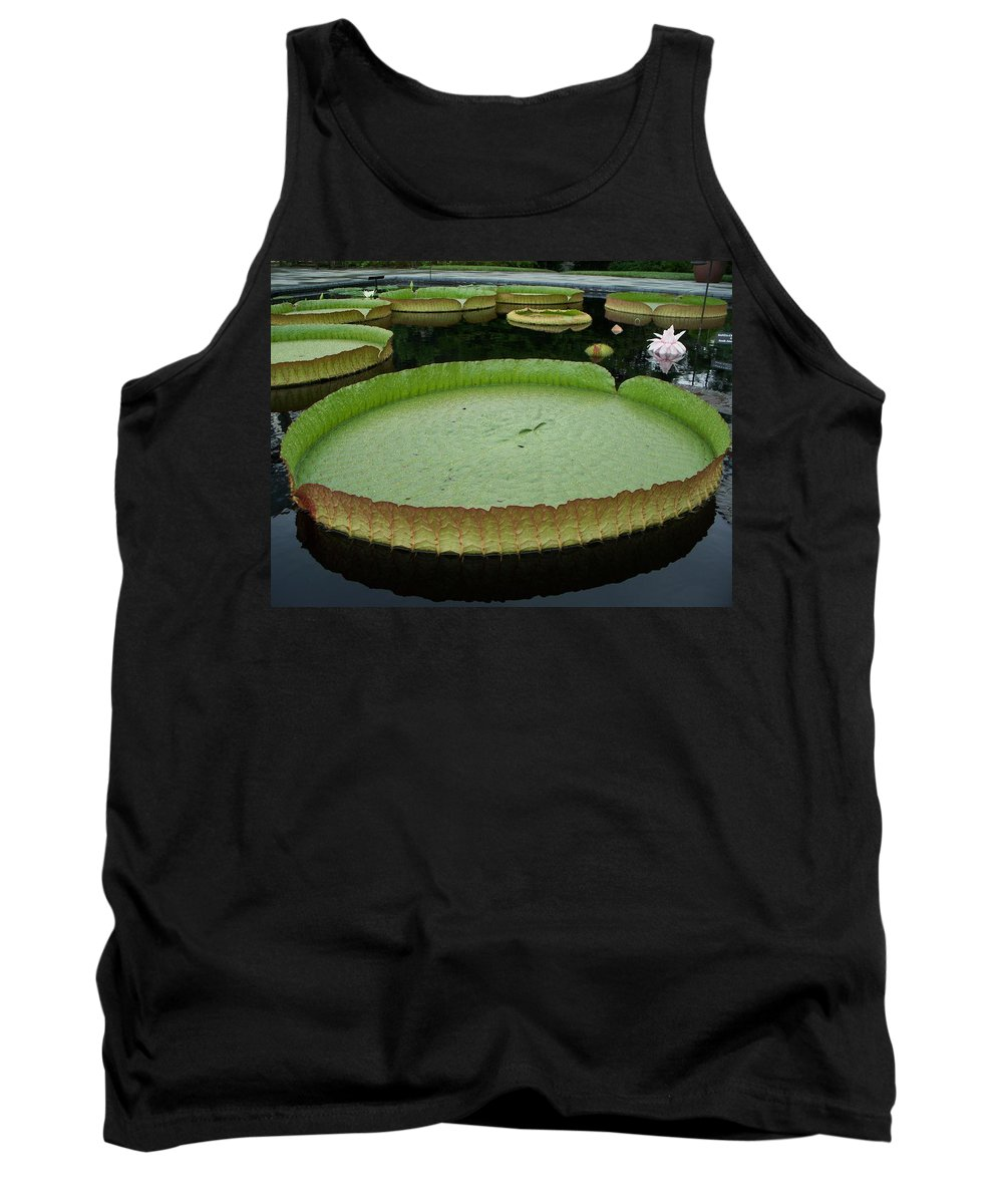 Lily Tank Top featuring the painting Lily Pads by Eric Schiabor