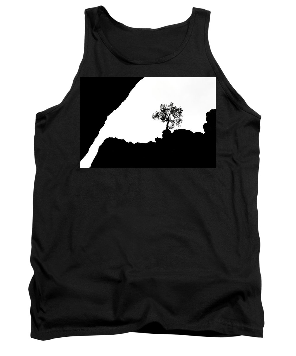Tree Tank Top featuring the photograph Looking Up by Marilyn Hunt