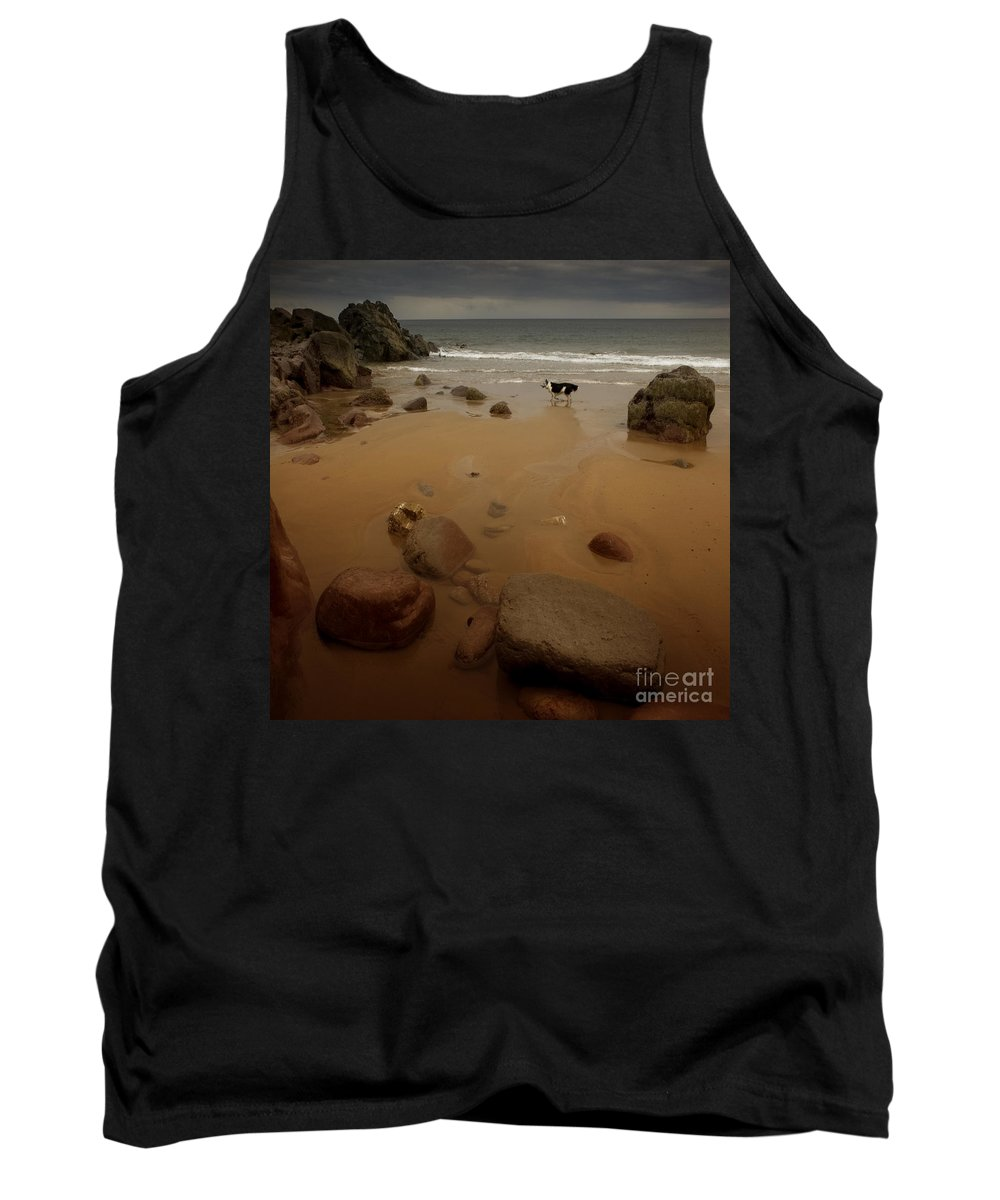 Beach Tank Top featuring the photograph On The Beach by Angel Ciesniarska