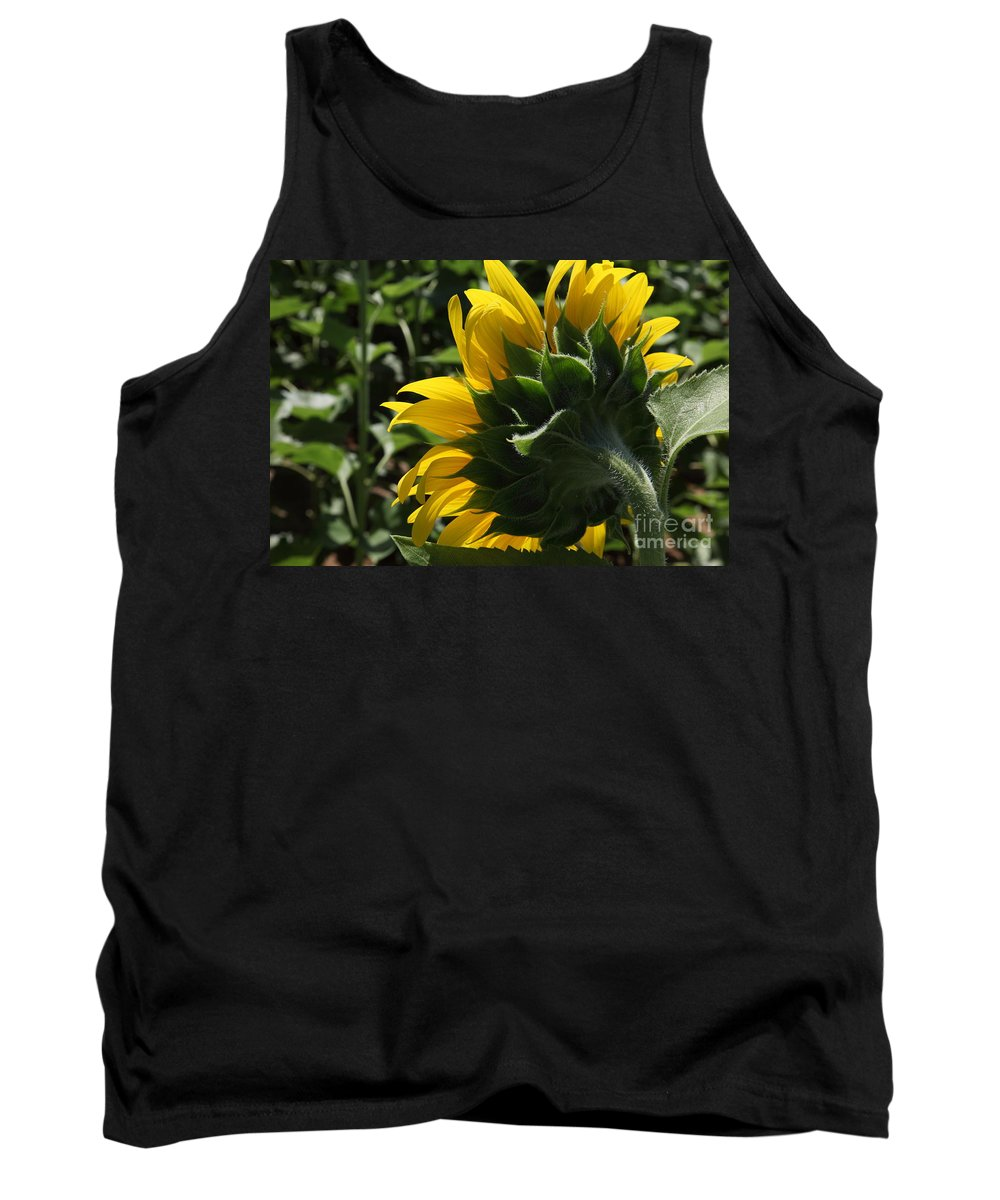 Sunflower Tank Top featuring the photograph Sunflower Series 09 by Amanda Barcon