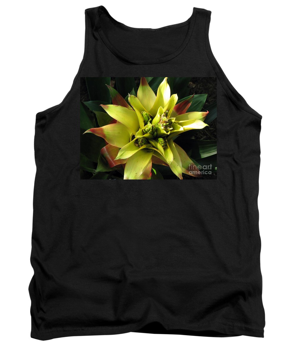 Tropical Tank Top featuring the photograph Tropical by Amanda Barcon