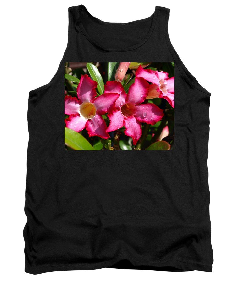 Desert Rose; Desert; Rose; Red; Pink; Flower; Bush; Garden; Florida; Plant; Adenium; Obesum; Africa; Tank Top featuring the photograph Desert Rose by Allan Hughes