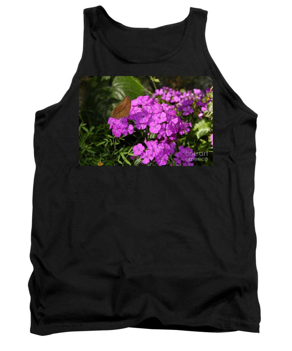 Butterfly Tank Top featuring the photograph A Beautiful Landing by David Lee Thompson