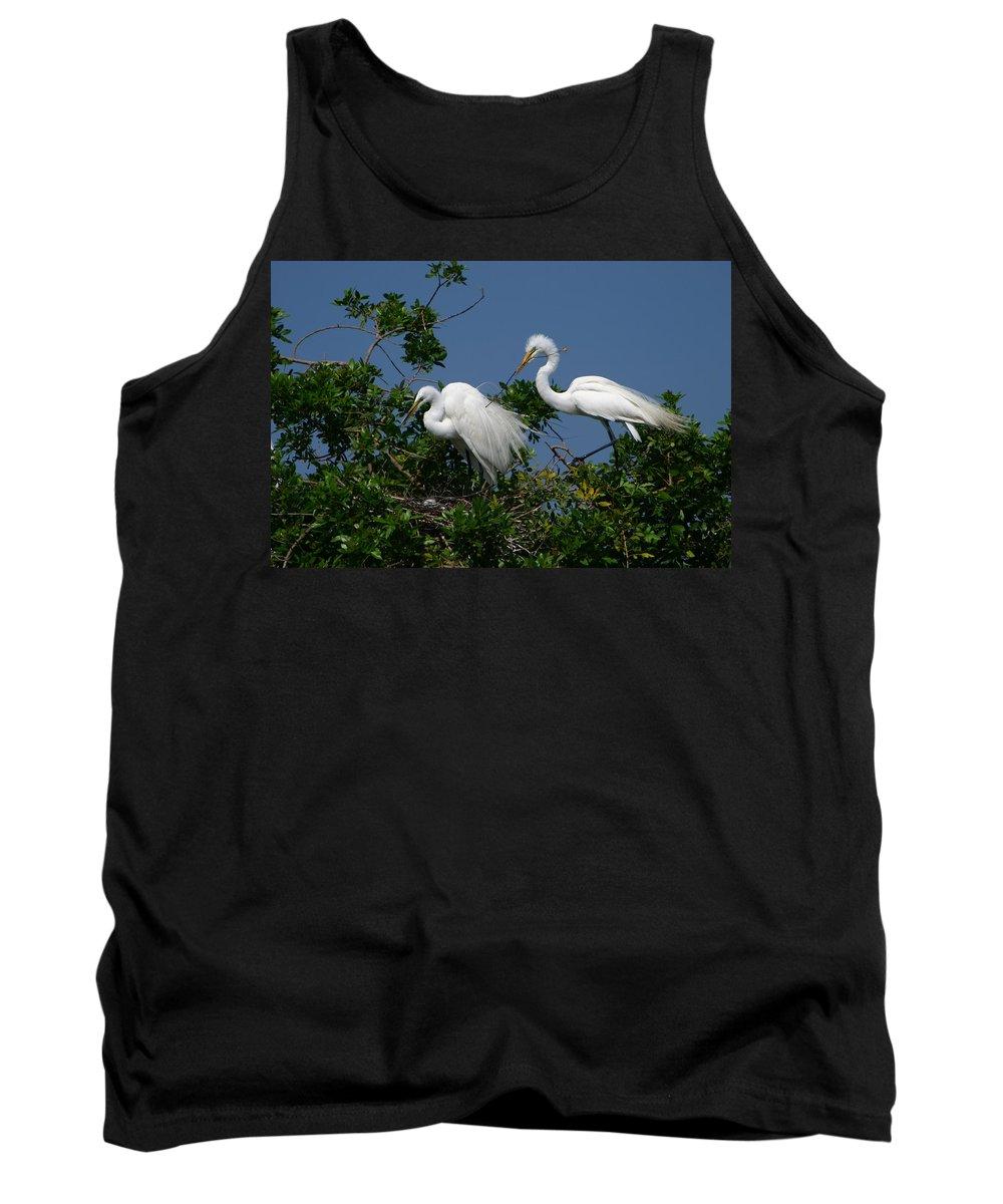Great White Egret Bird Feathers Animal Wildlife Florida Photograph Photography Tank Top featuring the photograph A Helping Beak by Shari Jardina