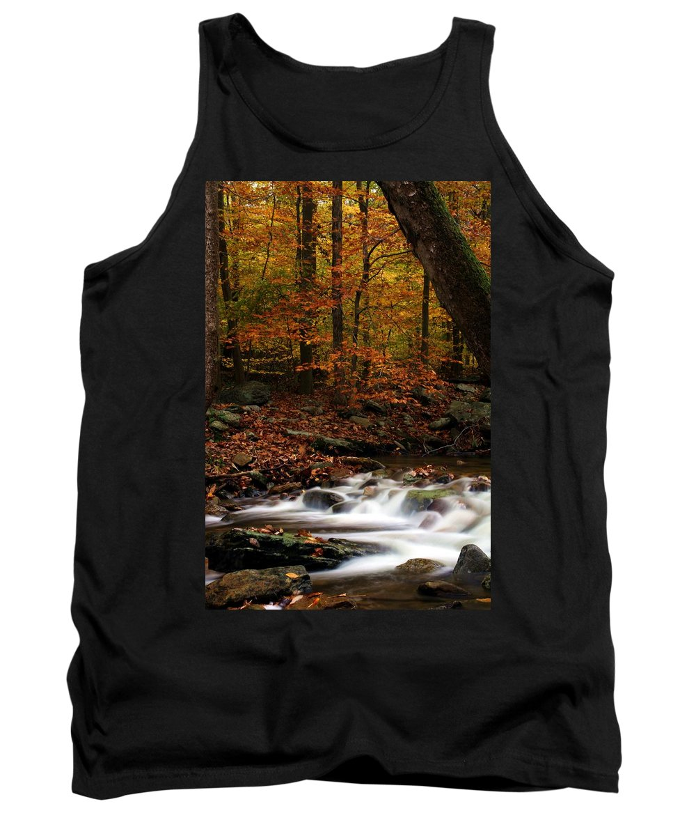 Autumn Tank Top featuring the photograph A Spectacle by Mitch Cat