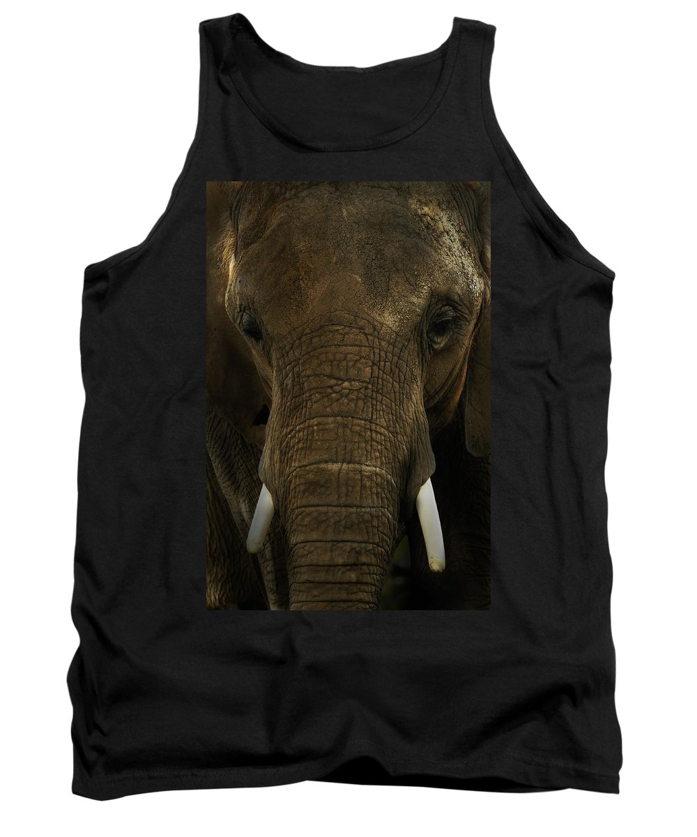 Africa Tank Top featuring the photograph African Elephant by Michael Cummings