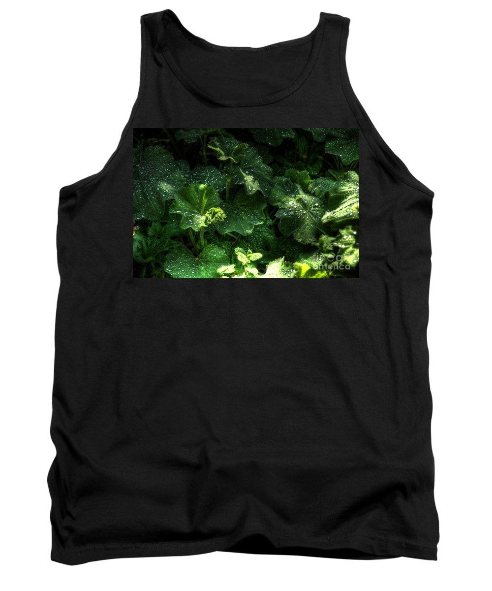 Chris Fleming Tank Top featuring the photograph After The Rain by Chris Fleming