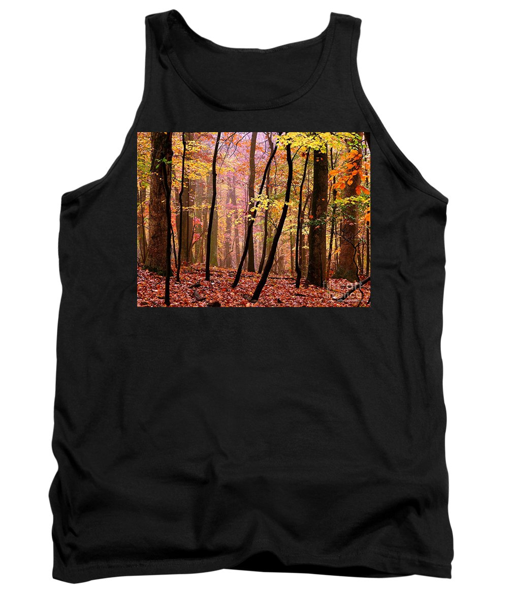 Fall Tank Top featuring the photograph All Fall by Jefferson Hobbs