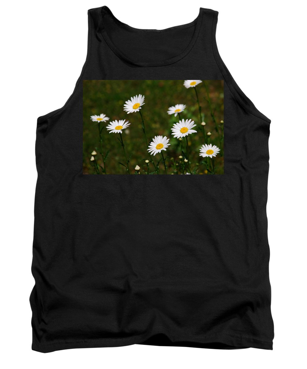 Daisy Tank Top featuring the photograph All The Daisies by Susanne Van Hulst