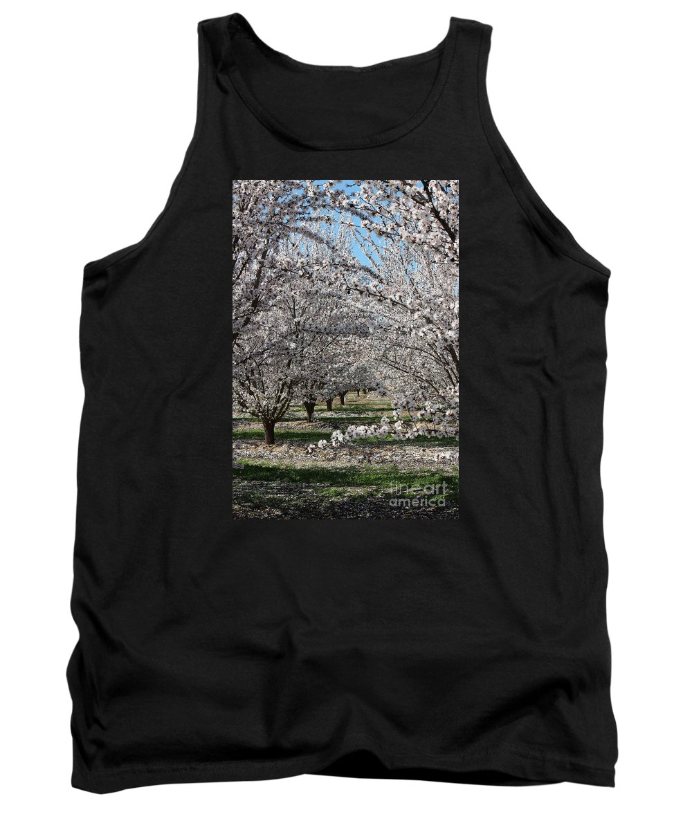 Almond Tank Top featuring the photograph Almond Orchard by Marta Robin Gaughen