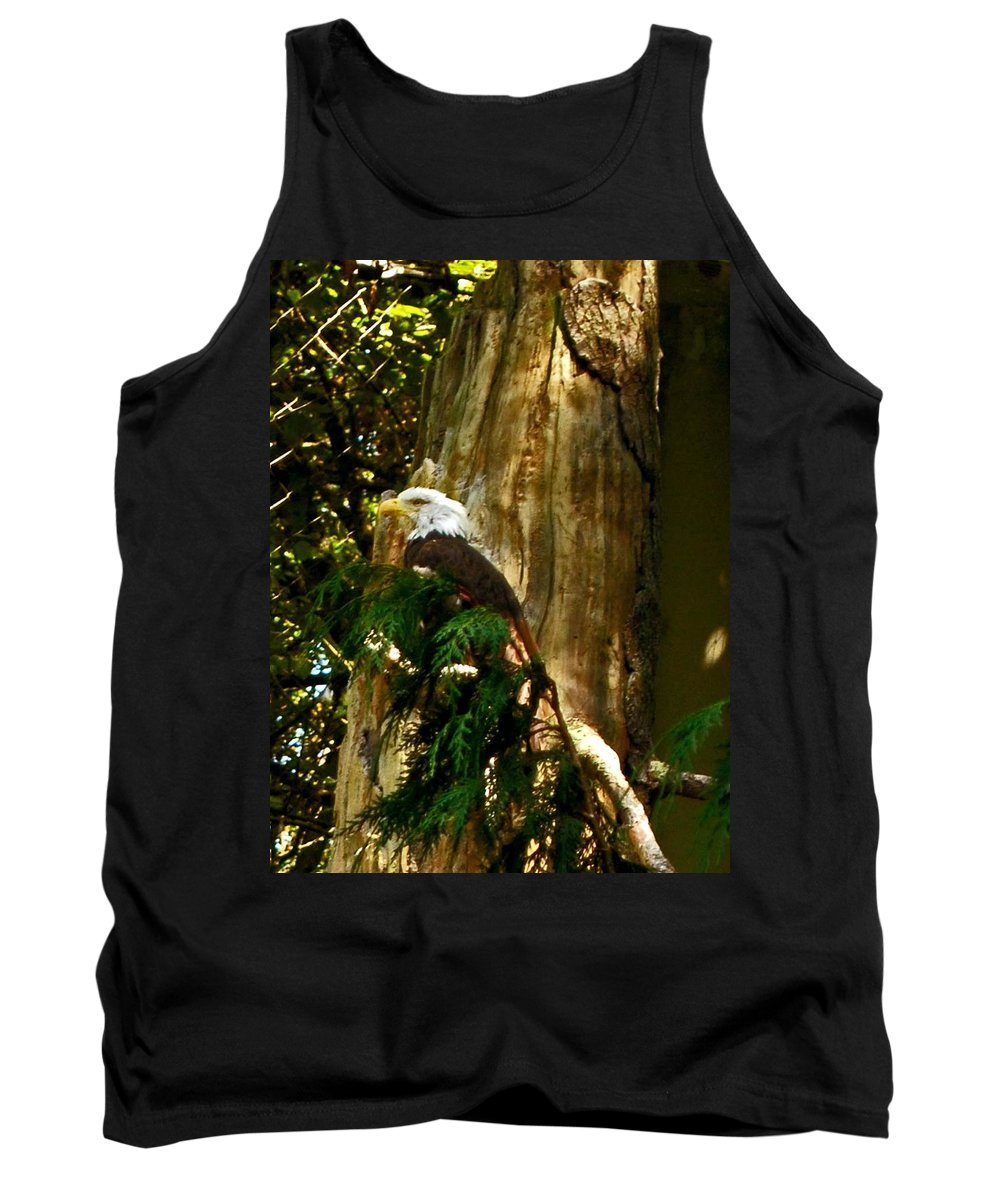 Eagle Tank Top featuring the photograph American Symbol by Gary Wonning