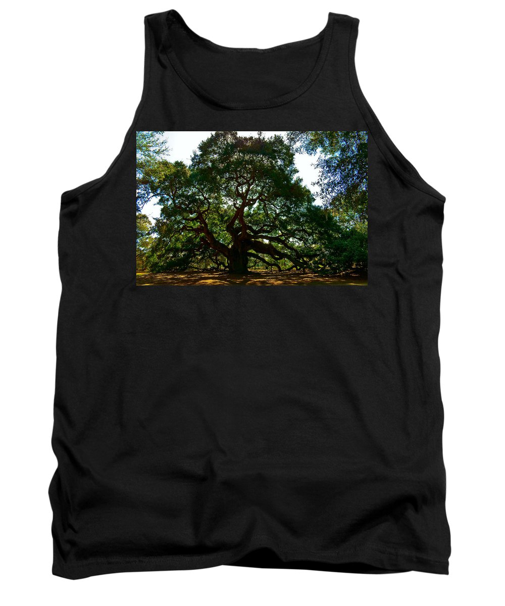 Tree Tank Top featuring the photograph Angel Oak Tree 2004 by Louis Dallara