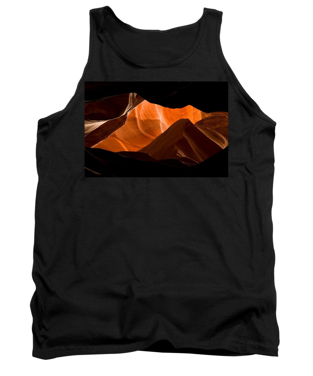 3scape Photos Tank Top featuring the photograph Antelope No 2 by Adam Romanowicz