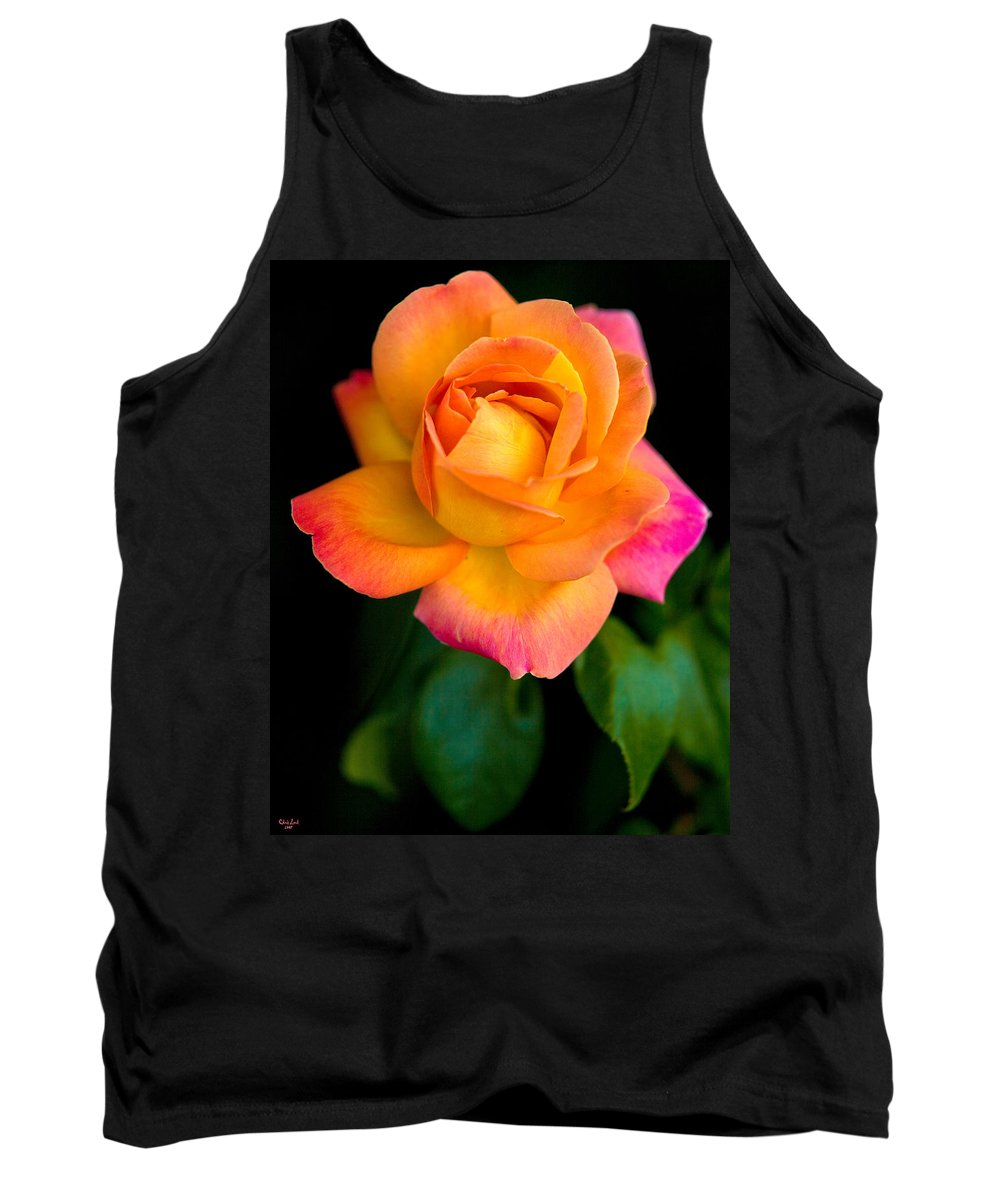 Rose Tank Top featuring the photograph Arundel Rose by Chris Lord