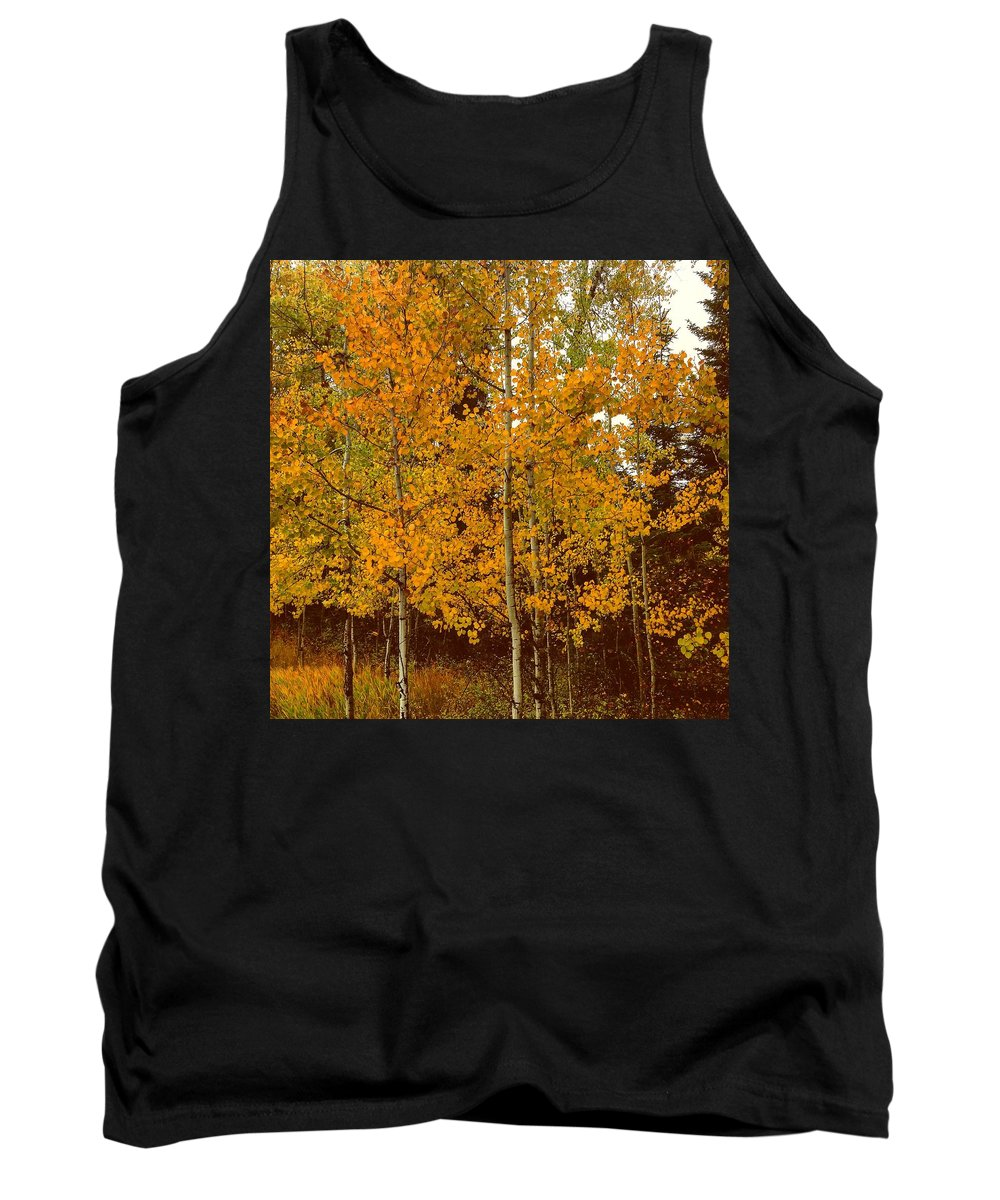 Aspen Trees Tank Top featuring the photograph Aspen Trees With Autumn Leaves by Chantel Schieffer