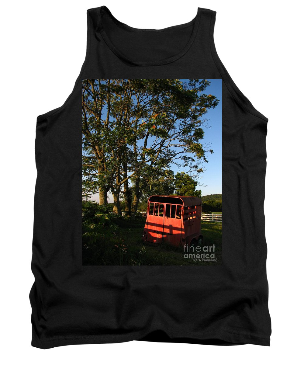 Landscape Tank Top featuring the photograph At Rest by Todd Blanchard